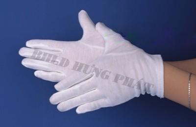 Găng tay phòng sạch chống tĩnh điện XC606